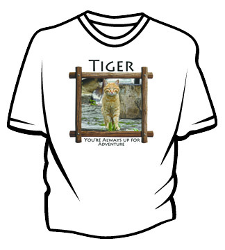 Best Printed T shirts in Monterey