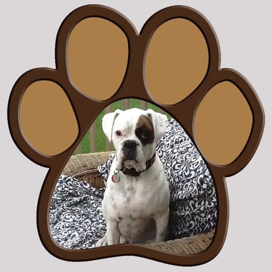 big dogpaw frame insert dog photo add to - Dog Picture Frame