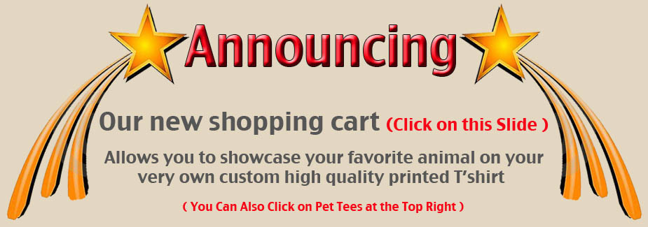 buy-custom-tshirt-with-pet-photo